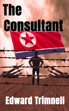 The Consultant: FREE on Amazon Kindle November 5th & 6th